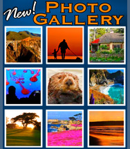 All New Monterey Photo and Picture Gallery!