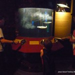 monterey-aquarium-tentacles-6