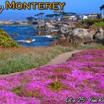 Purple Carpet in Pacific Grove is one of Monterey's Best!!!